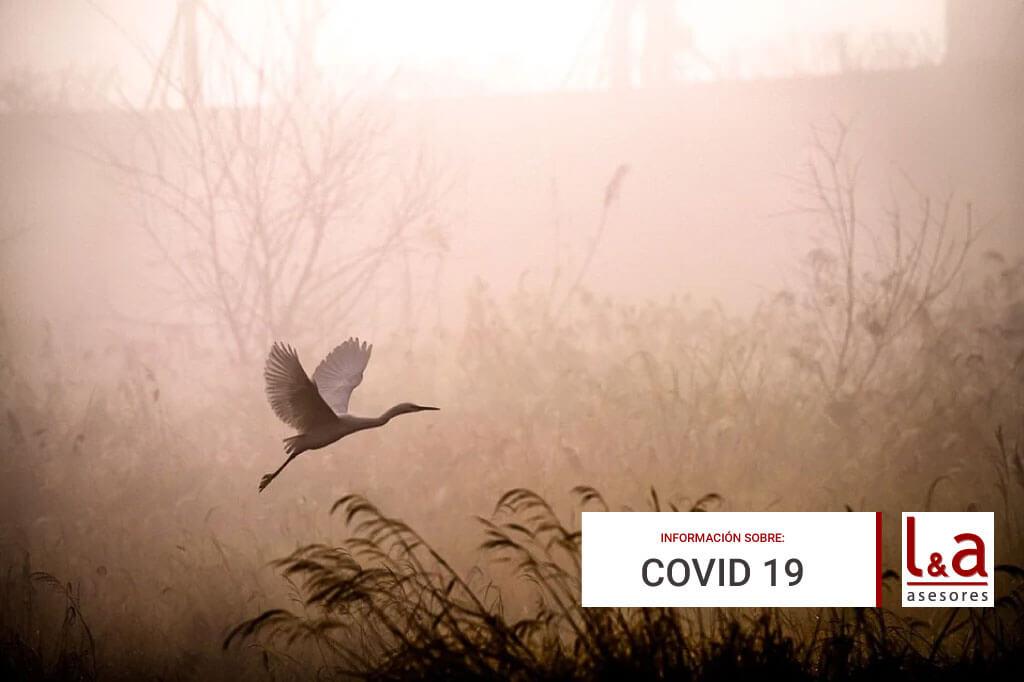 Resumen medidas extraordinarias Extremadura COVID a partir del 29 de enero